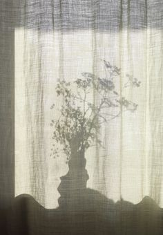 Linen curtain! Love it!!