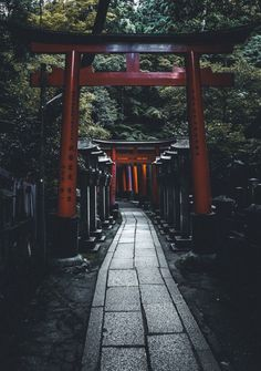 A Cool Guide to Japan - Tokyo, Osaka and Kyoto — BARCELONA FOOD EXPERIENCE : This cool guide is packed with lots of useful information on what to see and where to eat, sleep, drink and shop in Tokyo, Osaka and Kyoto. Aesthetic Japan, Japanese Aesthetic, Travel Aesthetic, Japon Tokyo, Tokyo Japan Travel, Go To Japan, Japan Japan, Japan Trip, Okinawa Japan
