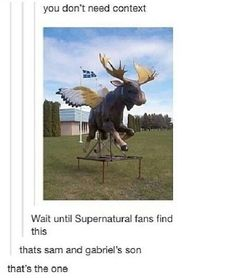 If Sam and Gabriel had a lovechild... I don't ship Sabriel at all but it does make me laugh :)