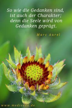 """""""So wie die Gedanken sind, ist auch der Charakter; denn die Seele wird von den Gedanken geprägt."""" (Marc Aurel) www.mediveda.de Foto: Sonja Moormann"""