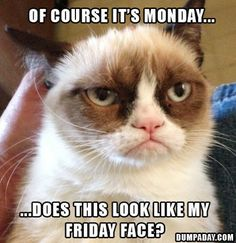 Too funny not to post hahaha! Do you feel this way too? #Mondays #Humor #lorisgolfshoppe