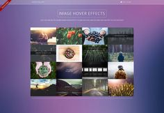 BOOTSTRAP IMAGE HOVER HTML & CSS EFFECTS GALLERY