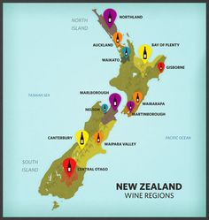 Want to get to know New Zealand wine country? Check out this guide. New Zealand Wine, Central Otago, Wine Tourism, Wine Baskets, Wine Guide, Wine Case, Wine And Beer, Shipping Wine, Wine Drinks