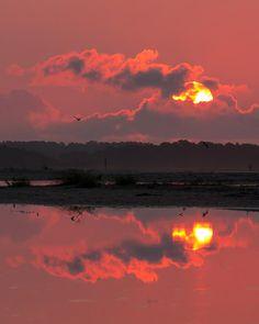 ✮ Beautiful Pink Sunrise