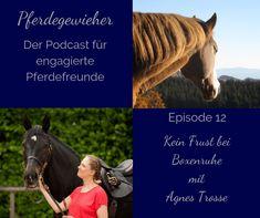 Boxenruhe ist weder für Pferd noch für Pferdebesitzer ein Zuckerschlecken. Agnes Trosse erklärt in dieser Episode des Pferdegewieher-Podcasts, wie du deinem Pferd die Boxenruhe erträglicher machen kannst. Horses, Sports, Animals, Horse Feed, Vet Office, Horseback Riding, Round Round, Hs Sports, Animales