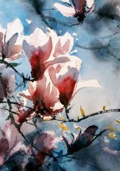 Yong Hong Zhong, magnolia