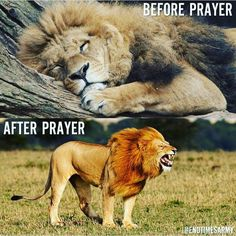 With the faith of prayer God sees all things will restore all things and in that with God all things are possible! In Jesus mighty name! AMEN!