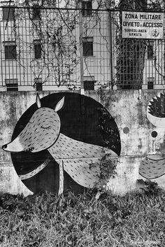 https://flic.kr/p/Ct16kZ   M.U.R.O   M.U.Ro. - Museo Urban di Roma è il primo museo di Urban Art a Roma ed è il primo progetto di museo completamente integrato nel tessuto sociale, come la forma d'arte di cui si occupa: la Street Art.