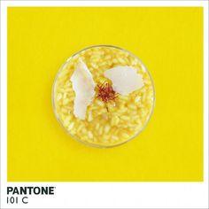 couleurs Pantone réalisées à partir d'aliments de la couleur concernée  Pantone 101 C - risotto parmesan