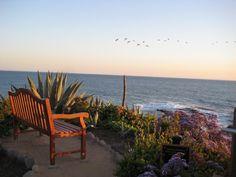 Treasure Island Park, Laguna Beach, California. Where we got engaged!