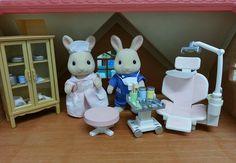 Sylvanian Families JP Dentist and Nurse