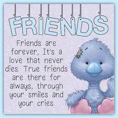 Friends Are Forever quotes quote friend friendship quotes friend quotes Friendship Poems, Happy Friendship Day, Friend Friendship, Special Friend Quotes, Best Friend Quotes, Special Friends, Friend Poems, Blue Nose Friends, Real Friends