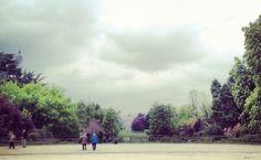 "Field recordings at ""Parco Sempione"" in Milano,Italy"