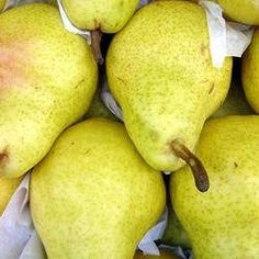 """Kirschensaller Pear seed for sale Growing Info, follow in order: Scarification: Soak in water, let stand in water for 24 hours. Stratification: cold stratify for 90 days. Germination: sow seed 3/4"""" deep, tamp the soil, keep moist, mulch the seed bed, can be sown outdoors in the fall for spring germination. Herb Seeds, Garden Seeds, Pyrus, Fruit Seeds, Seeds For Sale, Grass Seed, Garden Guide, Flower Seeds, Dream Garden"""