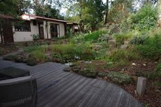www.samcoxlandscape.com Beautiful native Australian garden: volcanic rock edging and wooden decking