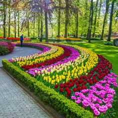Tips For Organic Gardening Most Beautiful Gardens, Beautiful Flowers Garden, Amazing Flowers, Amazing Gardens, Beautiful Landscape Wallpaper, Beautiful Flowers Wallpapers, Beautiful Landscapes, Beautiful Nature Pictures, Garden Landscape Design