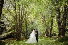 Foto sesion postboda en valdivia Wedding Dresses, Weddings, Santiago, Mariage, Fotografia, Bride Gowns, Wedding Gowns, Weding Dresses, Wedding Dress