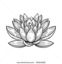 Lotus flower sketch inspirations pinterest flower sketches vector black and white water lily illustration mightylinksfo