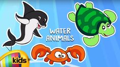 Lets Learn About Water Animal, Know About Water Animal, Educational Video For Kids, only on channel Mango Kids. Water animals is an animal which lives in water for most or all of its life. Lets take a look at few water animals like, Fish, turtle, Frog, Dolphin, Snail, Shark, Crocodile, Crab, Octopus And Whale. https://www.youtube.com/watch?v=TE3Ne2AMPnk