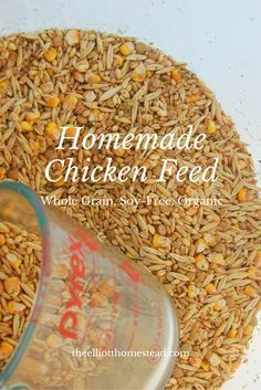 Homemade Chicken Feed -whole grain, soy-free, organic- http://www.theelliotthomestead.com