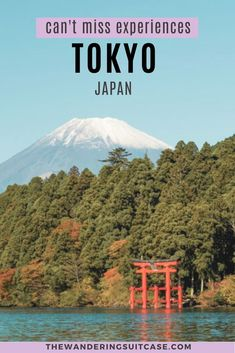 Bucket list experiences for when you visit Tokyo, Japan. best things to do in Tokyo. Guide to things to do in Tokyo Japan. Places To See, Places To Travel, Travel Destinations, Bucket List Destinations, Visit Tokyo, Visit Japan, Travel Inspiration, Travel Ideas, Travel Guide