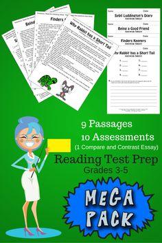 Reading Test Prep from Elsie's Corner! Grades 3-5!