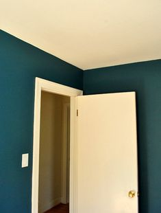 Holy Buckets | Young House Love...would love this color somewhere in the house (plumage by Martha Stewart)