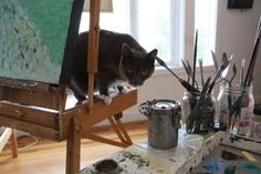 Fabulous Feature: Studio Cat from reader Kathy | KathleenHallArt.com #cat #kitten