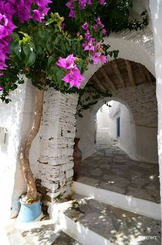 Greece https://www.hotelscombined.com/?a_aid=150886