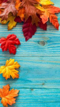 iPhone wallpaper autumn …