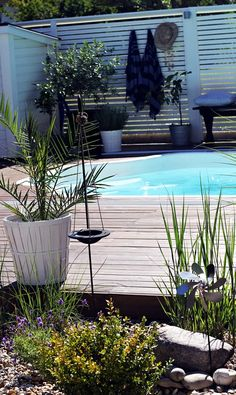 Pool On Pinterest Fencing Privacy Screens And Pool Decks