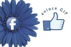 #Facebook, los #usuarios podrán disfrutar de los #GIF #redessociales #enlacegif #internet #perfil #méxico #argentina