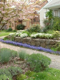 Timeless dry-stacked basalt retaining wall with plantings installed by Blessing Landscapes.