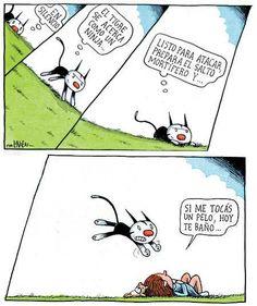me recuerda a Toribio ja! Funny Phrases, Short Comics, Humor Grafico, Calvin And Hobbes, I Love Cats, Caricature, Graphic Illustration, Illustrators, Memes
