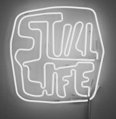 'Still Life' white neon, 2011 by artist Thrush Holmes