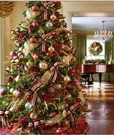 Christmas Trees on Pinterest #1: c3039aebbd6abbddcfc698dd