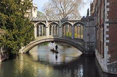 Cambridge University Bridge