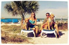 St. Pete Beach, on Florida's west coast, was just named the No. 1 beach destination in the United States. The TradeWinds Island Grand in St. Pete Beach is dog-friendly.