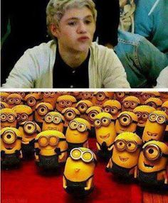 Two of my favorite things: Niall Horan and minons