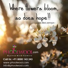 Bloom, Flowers, Plants, Pictures, Quotes, Qoutes, Dating, Photos, Floral