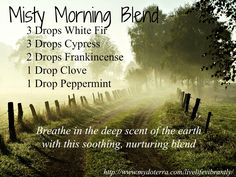 """Bring the outdoors inside with essential oils.   """"Misty Morning"""" blend - 3 drops White Fir, 3 drops Cypress, 2 drops Frankincense, 1 drop Clove, and 1 drop Peppermint. Please """"LIKE"""" me on Facebook: https://www.facebook.com/EOAdventureswithBecky ~~ Need to purchase oils? You can find out more information at https://beta.youngliving.com/vo/#/signup/start?site=US&sponsorid=2385830&enrollerid=2385830  ~~"""