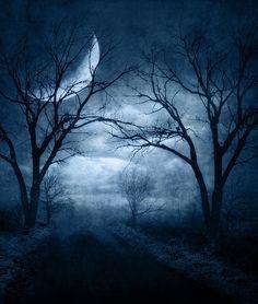 10 tips for photographing the moon Tattoo Mond, Photographing The Moon, Beautiful Moon, Beautiful Things, Dark Gothic, Gothic Art, Night Skies, Dark Art, Creepy