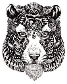 Incredibly Amazing Animal Illustrations by Iain Macarthur
