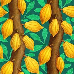 seamless pattern design with cocoa chocolate trees, featuring tree trunks with yellow cocoa pods and leaves # tree Chocolate Tree, Cocoa Chocolate, Tree Illustration, Botanical Illustration, Cut Out Shapes, Advertising Photography, Surface Pattern Design, Print Patterns, Beautiful Flowers