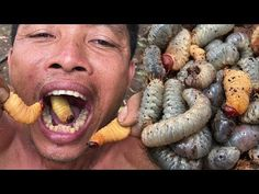 Primitive Culture: Amazing Man Find and Cooking Coconut Worms Primitive Technology: Catch And Cook banded bullfrog - Brave Wilderness . Wild Animals Attack, Animal Attack, Hunting Videos, Giant Snake, Primitive Technology, Worms, A Good Man, Amazing Man, Animals And Pets