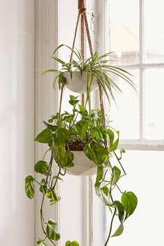 Shop Ellis Double Hanging Planter at Urban Outfitters today. We carry all the latest styles, colors and brands for you to choose from right here.