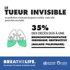 19 octobre 2016 – L'Organisation mondiale de la santé (OMS) en partenariat avec la Coalition pour le climat et l'air pur (CCAC) et le gouvernement de Norvège, vient de lancer une campagne mondiale de sensibilisation aux dangers liés à la pollution de l'air pour la santé des individus.