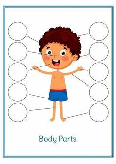 Science Activity Body Parts Preschool Activities, Body Preschool, Toddler Learning Activities, Kids Learning Activities, Baby Learning, Montessori Activities, Preschool Worksheets, Body Parts For Kids, Hygiene