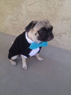Tuxedo for DogsCostumes for dogsPugs by PugsNGiggles on Etsy, $25.00