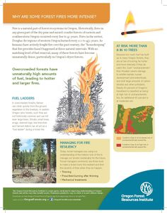 Why are some forest fires more intense?, by the Oregon Forest Resources Institute
